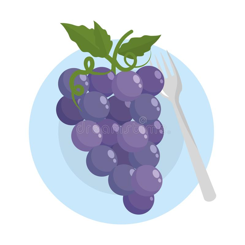 Isolated grapes fruit with leaves design. Grapes with leaves design, Fruit healthy organic food sweet and nature theme Vector illustration royalty free illustration