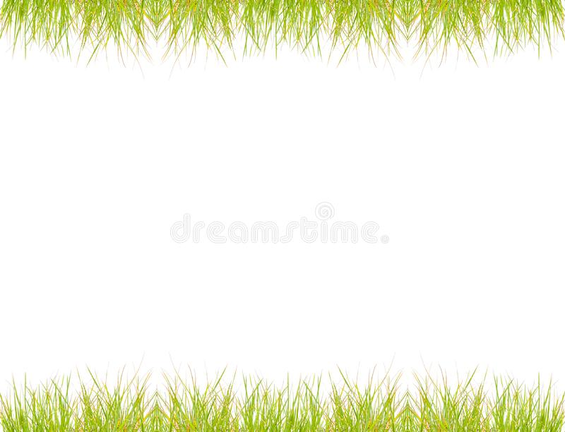 Green grass frame over white royalty free stock images