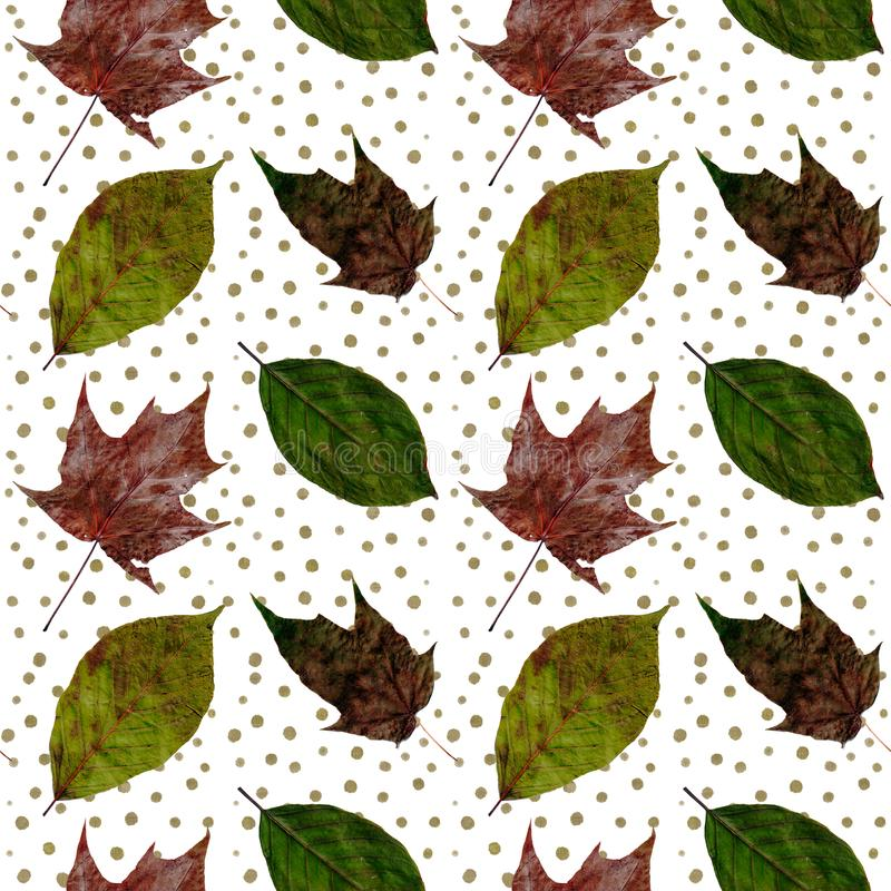 Isolated green and red leaves of different trees seamless collage pattern on a white with gold polka dots. Isolated green and red leaves of different trees royalty free stock images