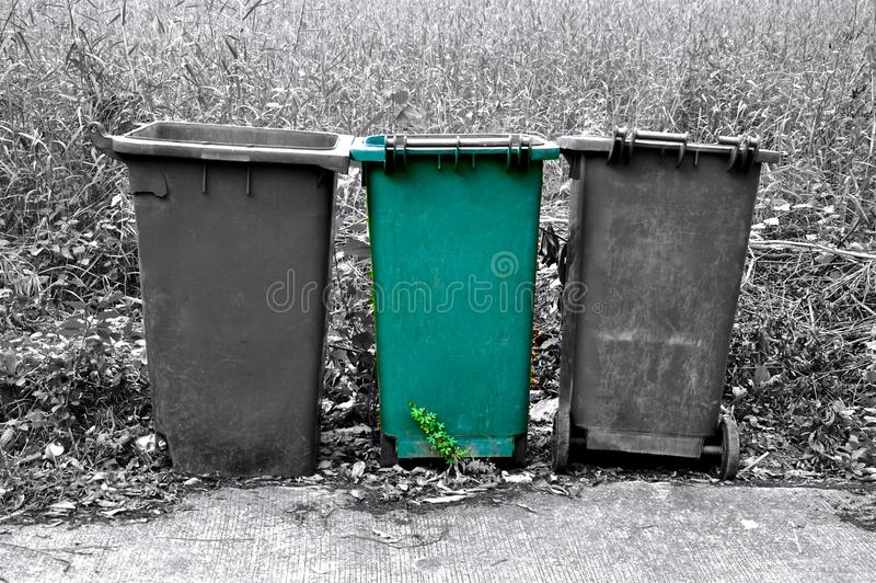 Isolated green refuse bin. Row of three refuse bins in black and white, with one isolated green bin stock photography