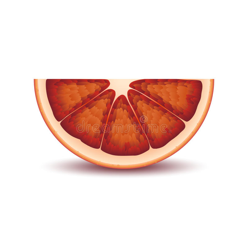 Isolated half of circle juicy red color bloody orange with shadow on white background. Realistic colored slice. stock illustration