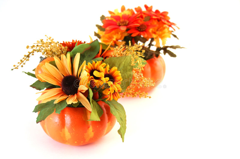 Isolated Halloween Flowers stock images