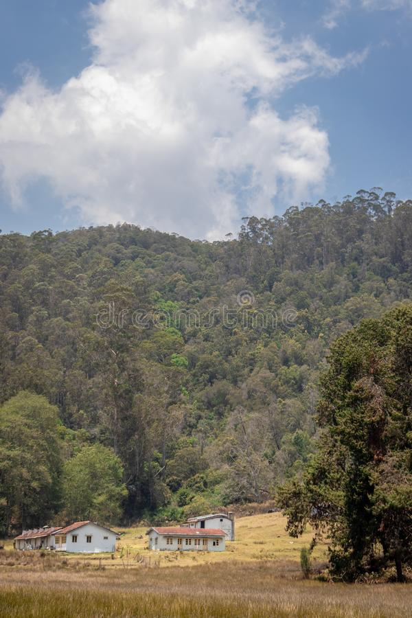 Isolated homes in green forests. Isolated homes in forests image is taken at kodaikanal showing the nature love of human royalty free stock photos