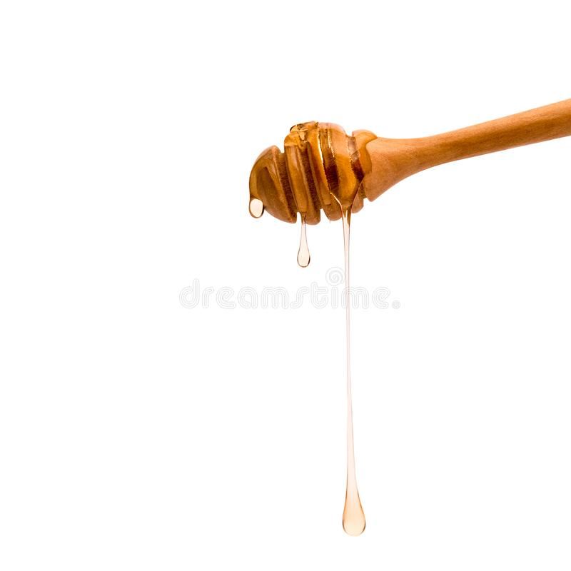 Isolated honey dripper. On white background royalty free stock images