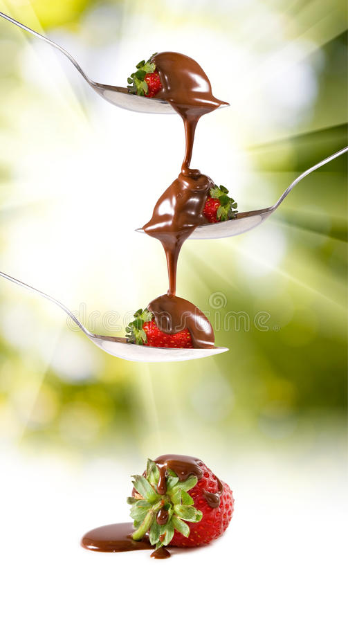Isolated image of a chocolate and strawberry on a spoon. Isolated image of chocolate and strawberry on a spoon royalty free stock image