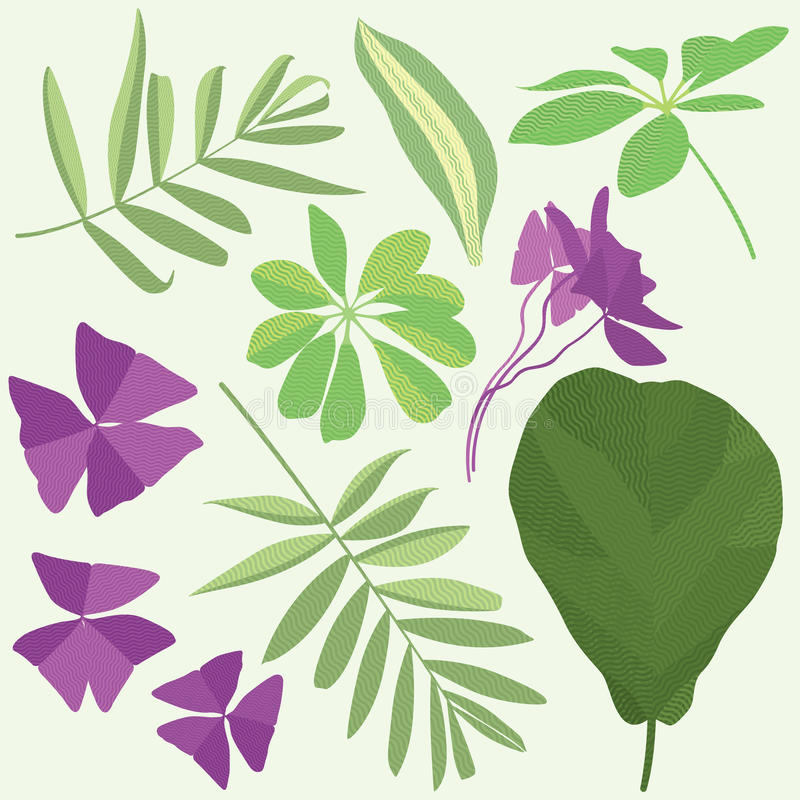 Isolated leaves of potted flowering plants. Flat illustration, set of leaves royalty free illustration