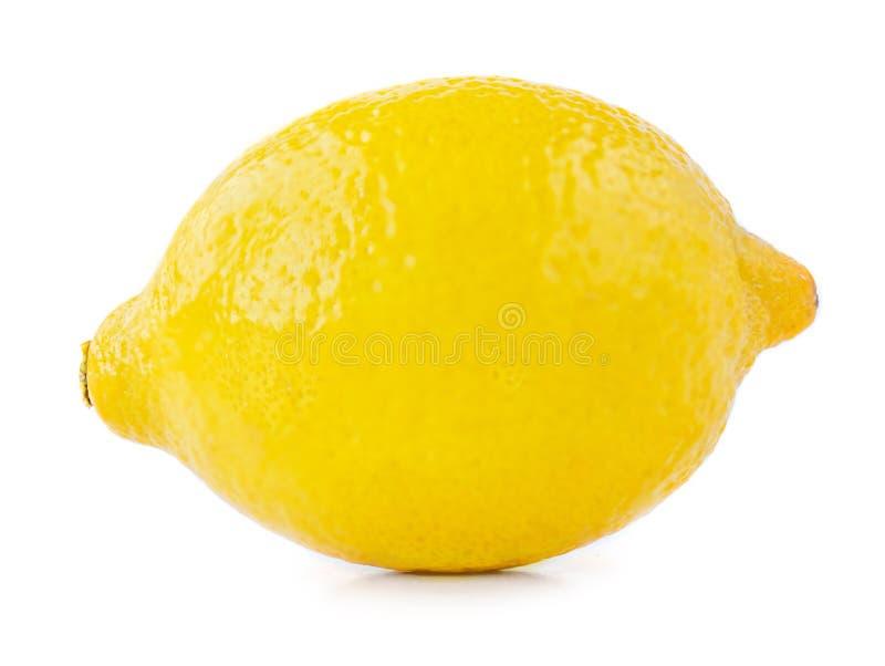 Isolated Lemon Fruit. Ripe whole yellow lemon citrus  on white background. Macro royalty free stock image