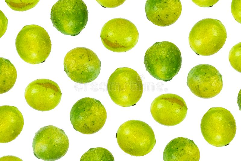 Isolated lime pattern or wallpaper on white background. Summer c. Oncept of fresh ripe whole lime fruits shot from above royalty free stock photo