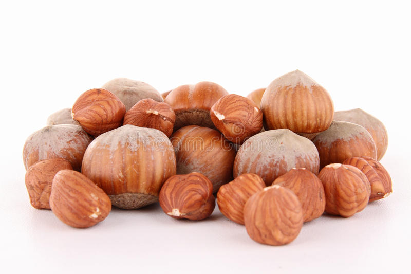 Download Isolated Nuts, Hazelnut Stock Photography - Image: 23773572