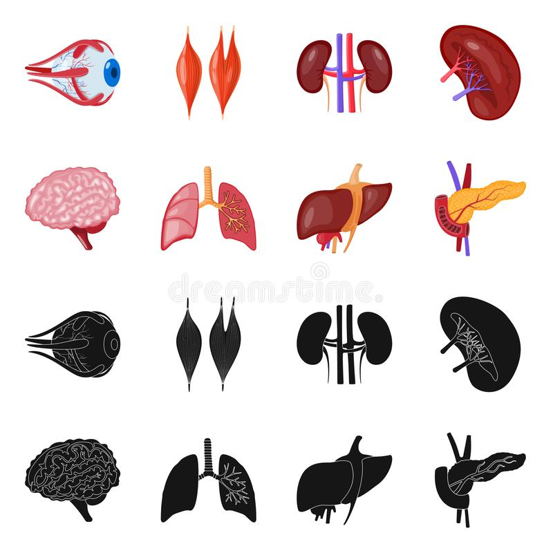 Vector illustration of biology and scientific sign. Collection of biology and laboratory stock vector illustration. Isolated object of biology and scientific stock illustration