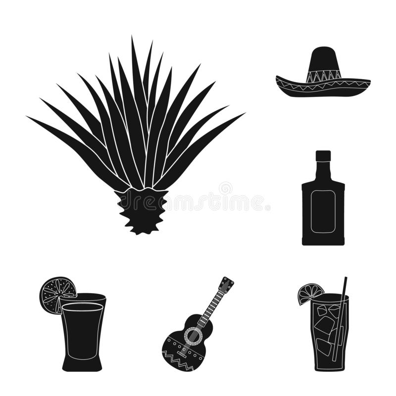 Vector illustration of carnival and national icon. Collection of carnival and tequila stock symbol for web. Isolated object of carnival and national symbol. Set stock illustration