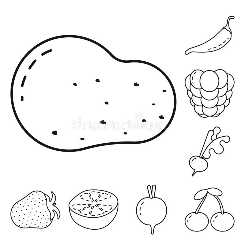Isolated object of healthy and ripe sign. Collection of healthy and harvest stock vector illustration. Vector design of healthy and ripe logo. Set of healthy stock illustration