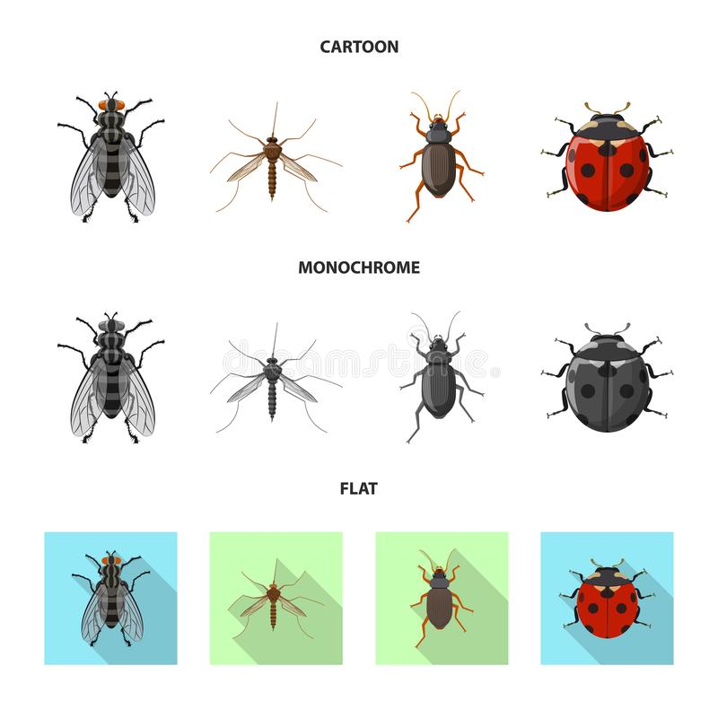 Vector illustration of insect and fly logo. Collection of insect and element vector icon for stock. vector illustration