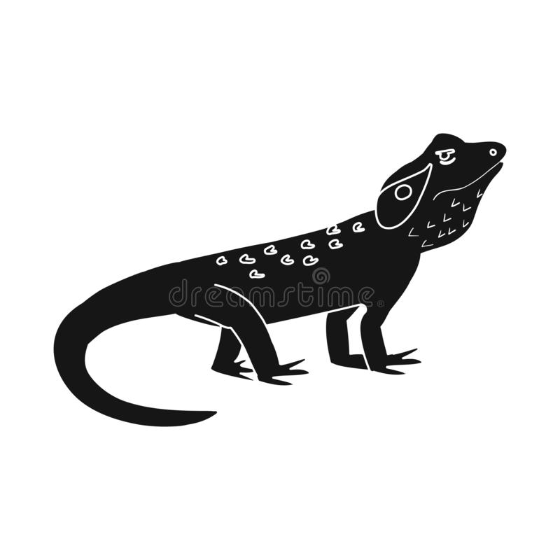 Vector illustration of lizard and agama icon. Collection of lizard and creature stock symbol for web. Isolated object of lizard and agama symbol. Set of lizard royalty free illustration