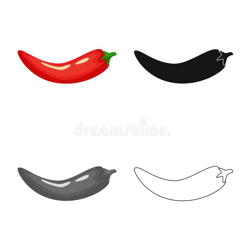 Isolated object of pepper and red logo. Set of pepper and cook stock symbol for web. Vector design of pepper and red icon. Collection of pepper and cook stock stock illustration