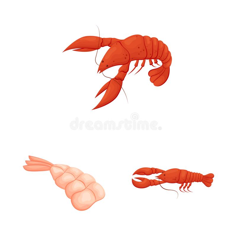 Isolated object of shrimp and crab logo. Collection of shrimp and sea vector icon for stock. stock illustration