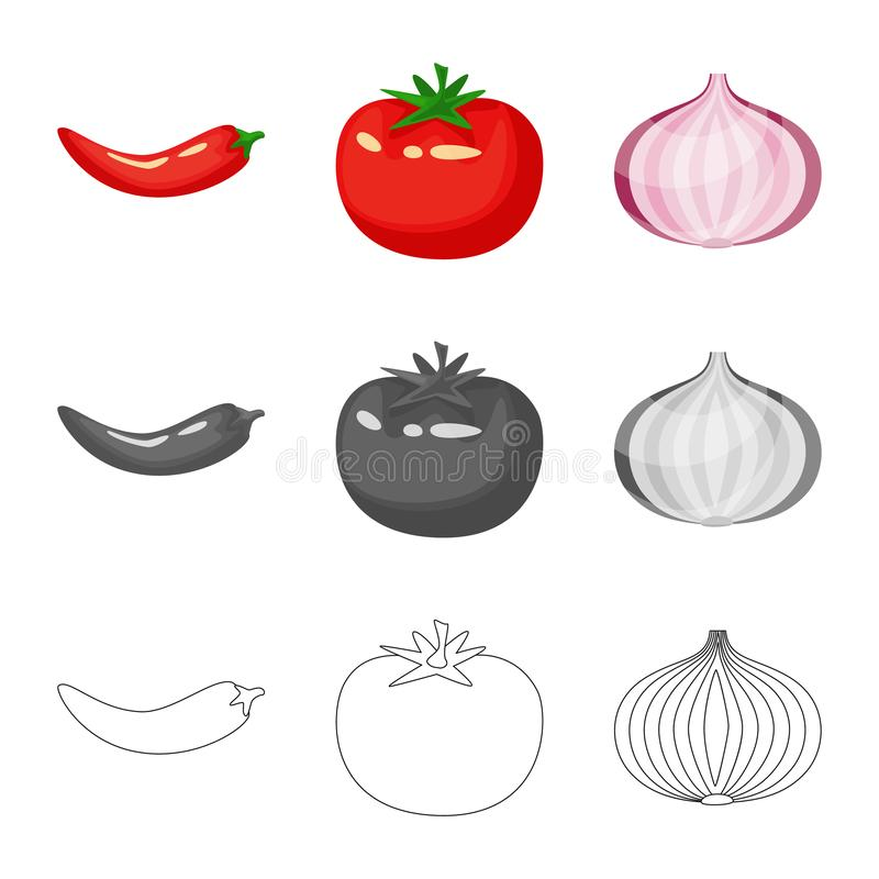 Isolated object of taste and product icon. Collection of taste and cooking stock symbol for web. Vector design of taste and product symbol. Set of taste and stock illustration