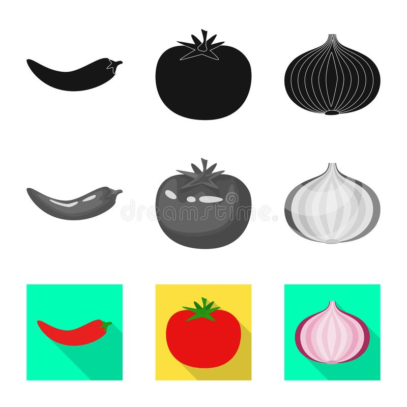 Vector illustration of taste and product symbol. Collection of taste and cooking stock vector illustration. Isolated object of taste and product sign. Set of vector illustration