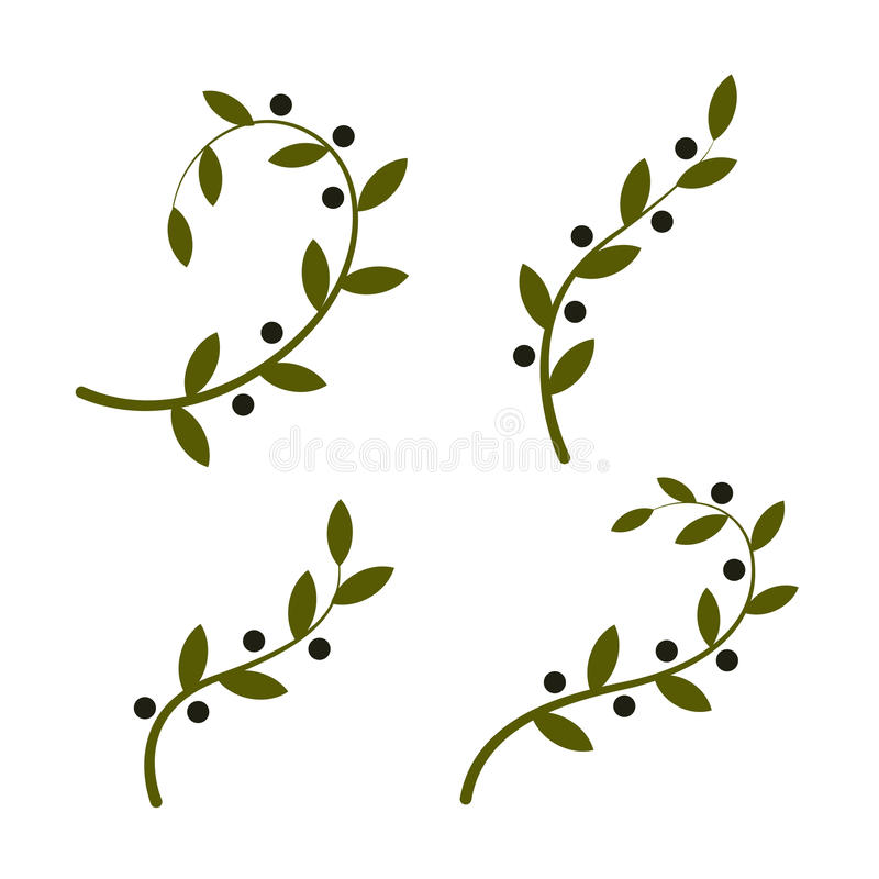 Olive Branch Logo Design