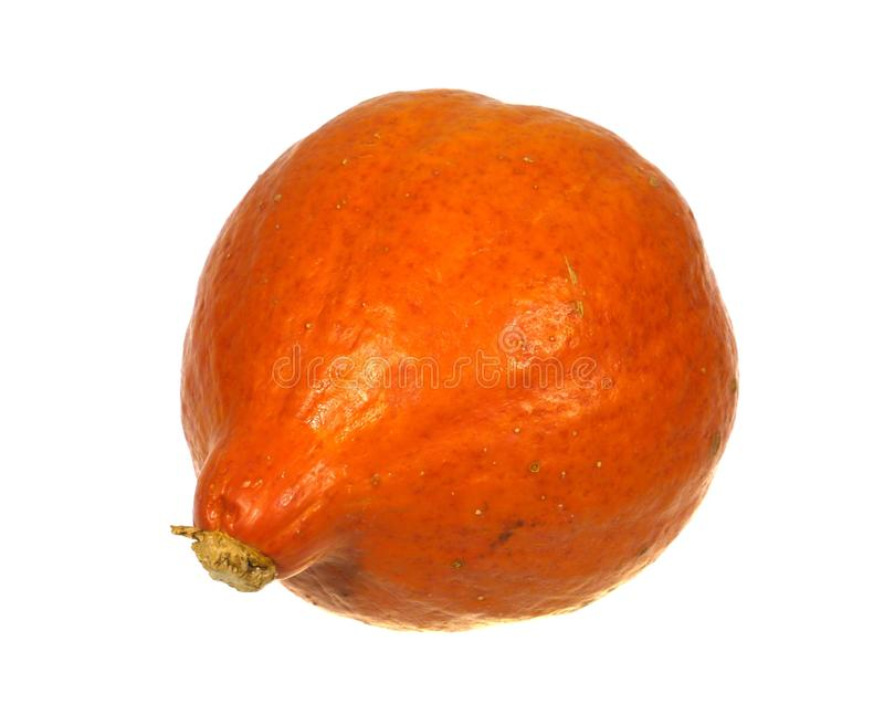 An isolated orange pumpkin. A pumpkin is a cultivar of the squash plant over white stock image