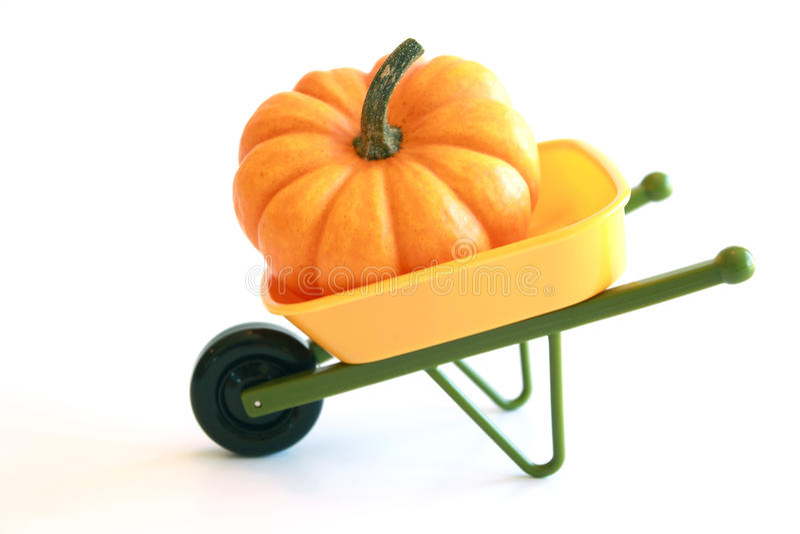 Isolated Orange Pumpkin In Wheelbarrow Royalty Free Stock Photo