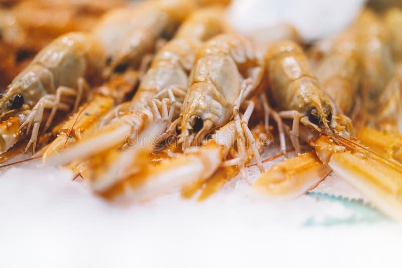 Isolated orange shrimp on ice background on the market, closeup of fresh crustacean products in restaurant, useful shellfish sea stock images