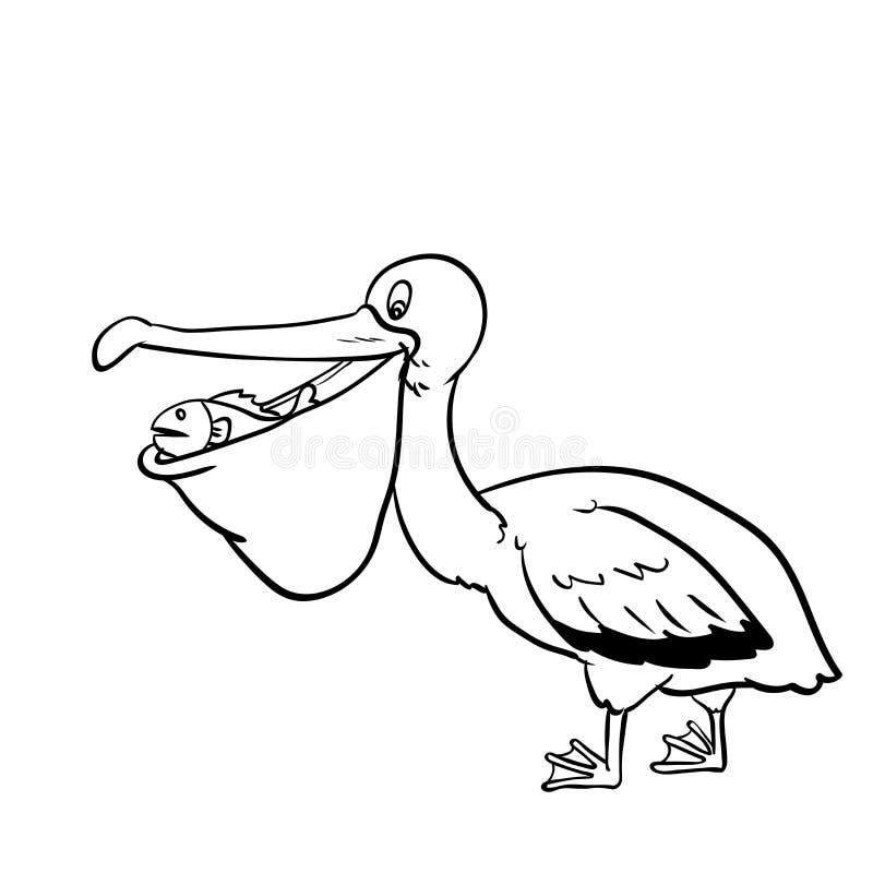 Isolated Pelican Cartoon-Vector Hand drawn Illustration royalty free illustration