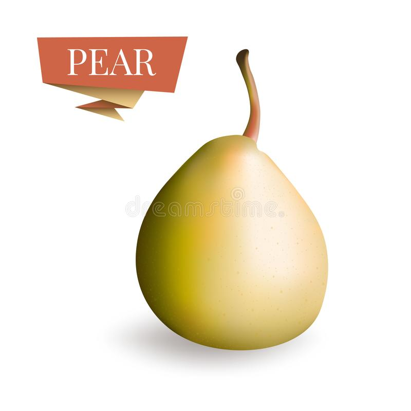 Isolated picture of pear fruit. 3d pear vector illustration. Pear icon, art, clipart for label, package design. royalty free stock photography