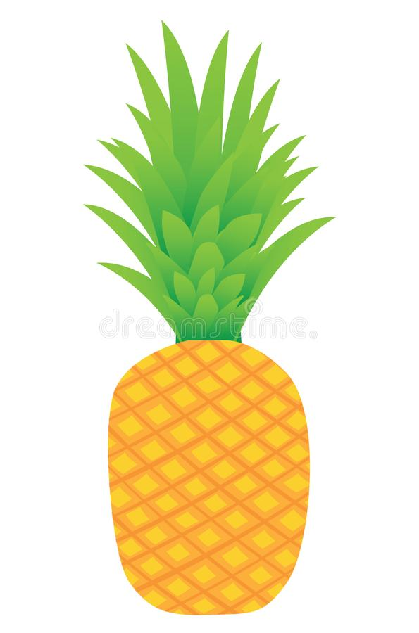 Isolated pineapple fruits royalty free stock photo