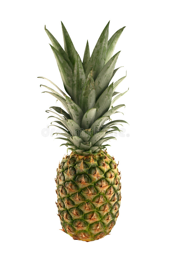Isolated pineapple on white background stock photography
