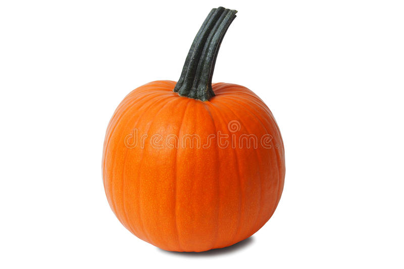 Isolated pumpkin stock images