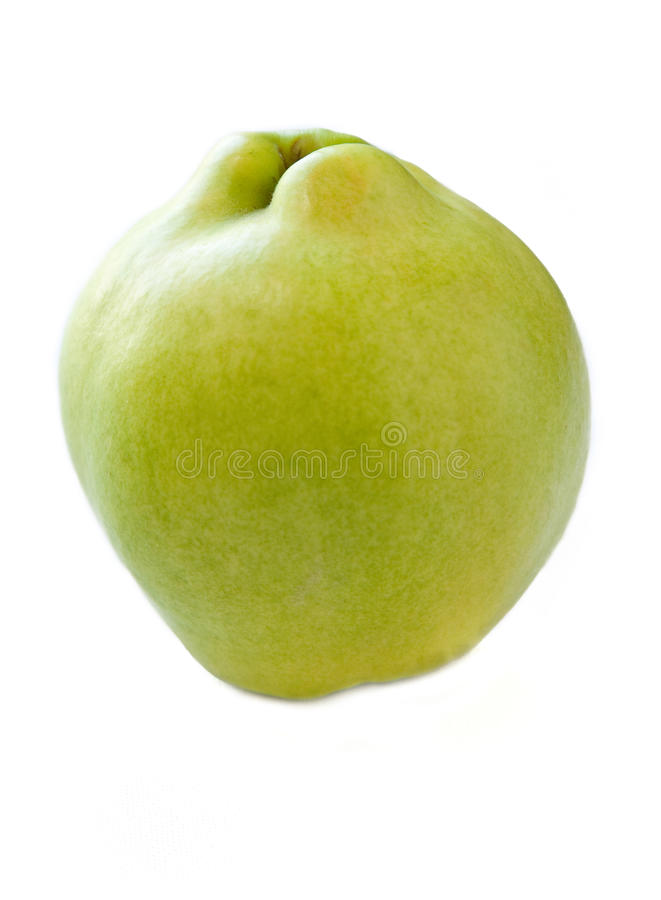 Download Isolated Quince Stock Photography - Image: 16641722