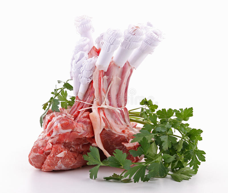 Isolated raw rack of lamb stock photos