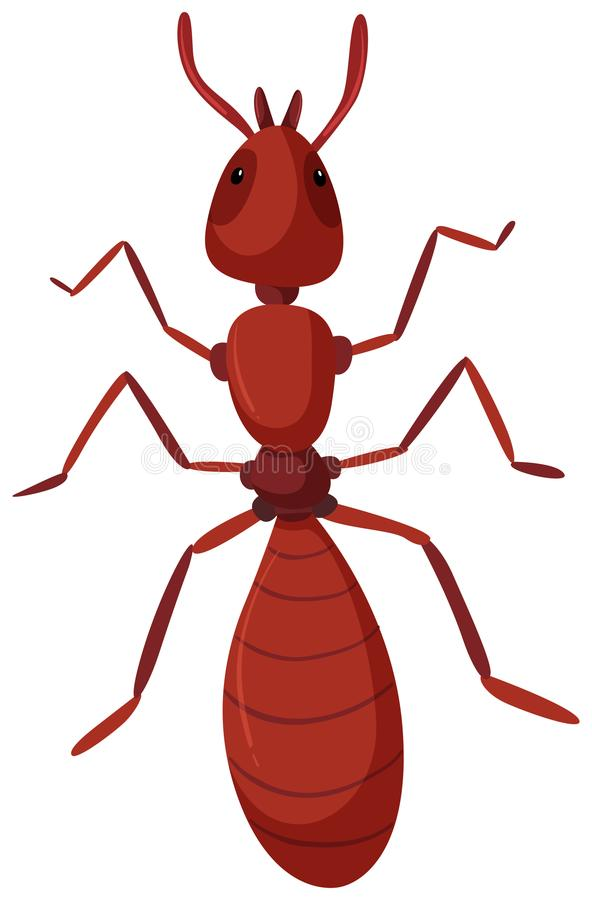 An isolated red ant. Illustration stock illustration