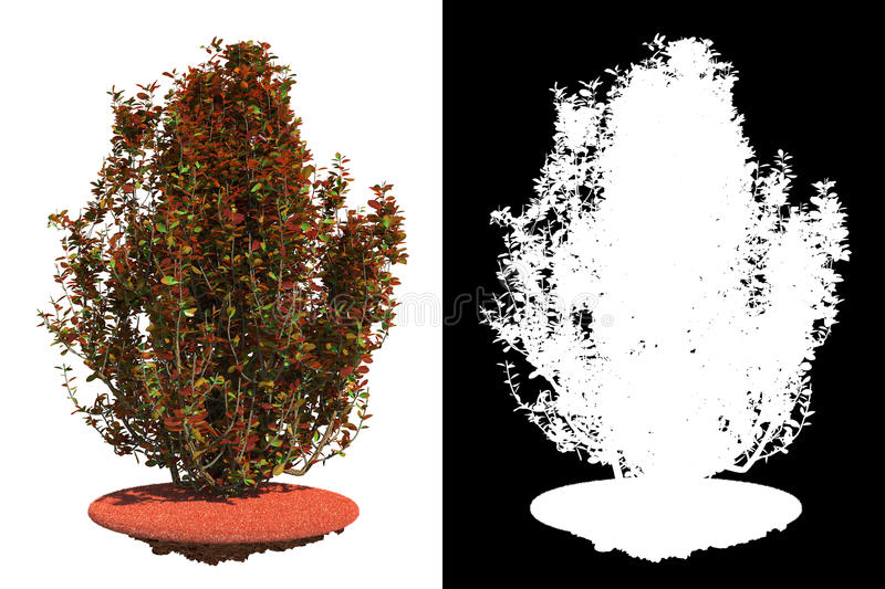 Isolated Red Bush with Detail Raster Mask.