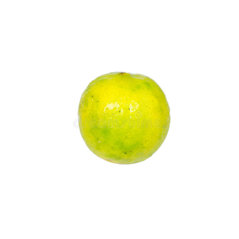 Isolated ripe lime. The food ingredient stock images