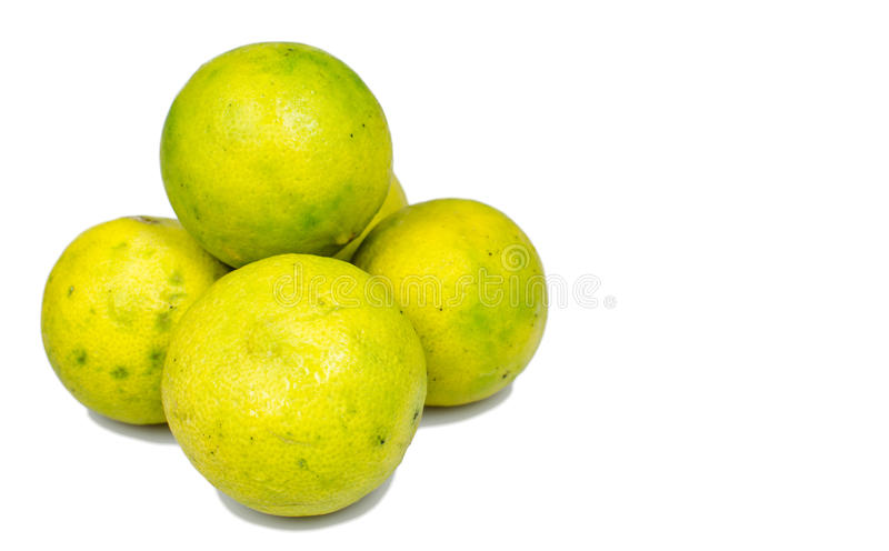Isolated ripe lime. The food ingredient royalty free stock image