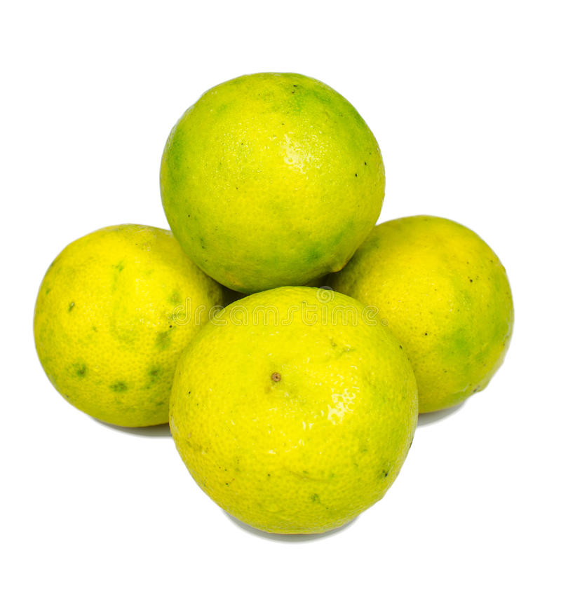 Isolated ripe lime. The food ingredient stock photos