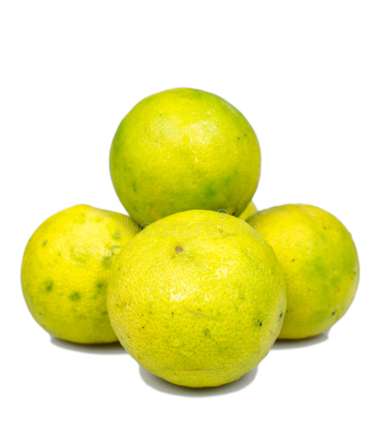 Isolated ripe lime. The food ingredient royalty free stock photos
