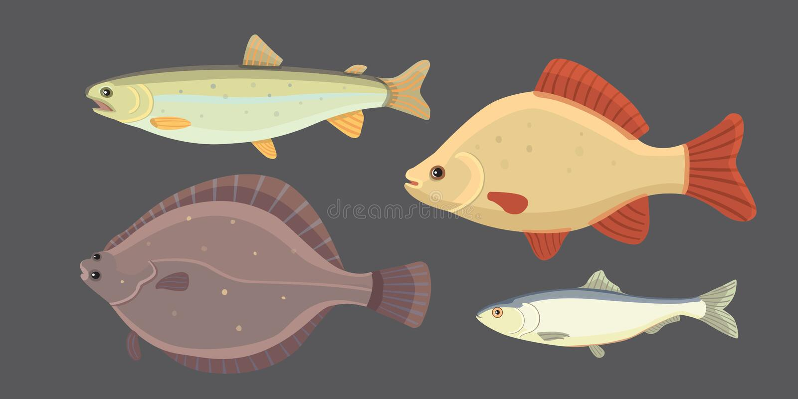 Isolated river fish. Set of freshwater sea cartoon fishes. Fauna ocean vector illustration. Isolated river fish. Set of freshwater sea cartoon fishes. Fauna royalty free illustration
