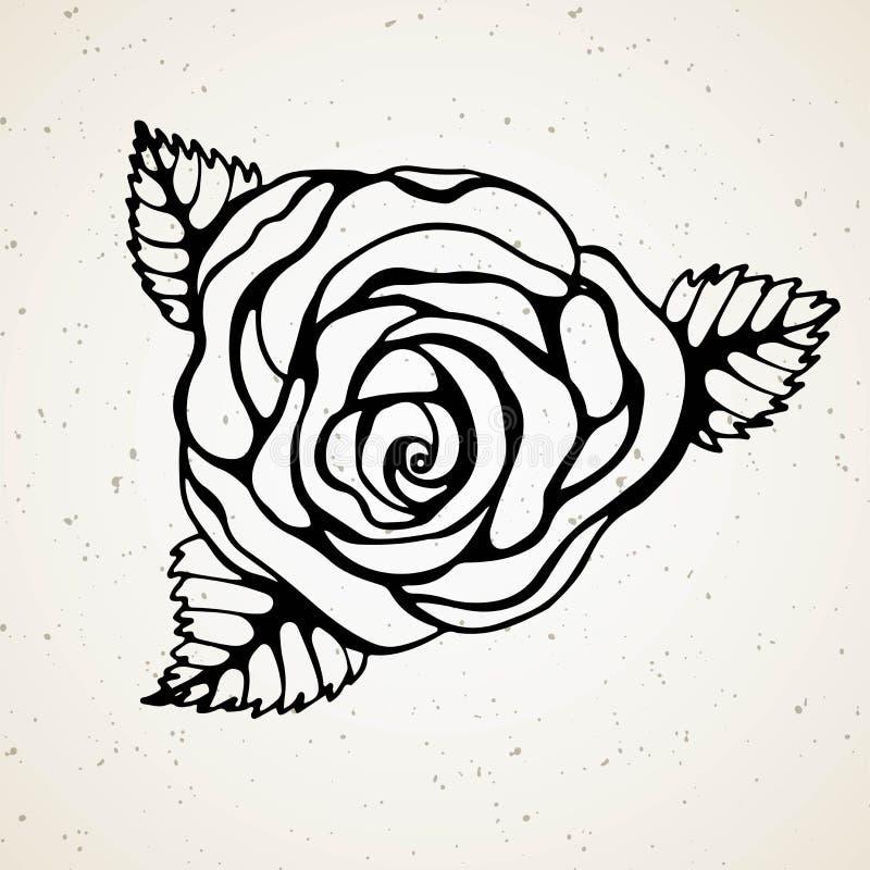 Isolated rose. Outline drawing. Stock line vector illustration. Tattoo line art blackvork oldschool vector illustration