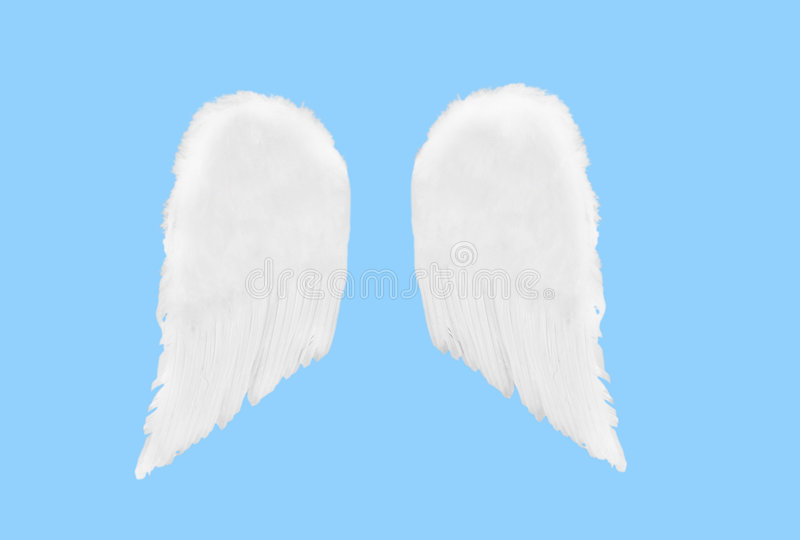 Isolated Separated Angel Wings royalty free stock image