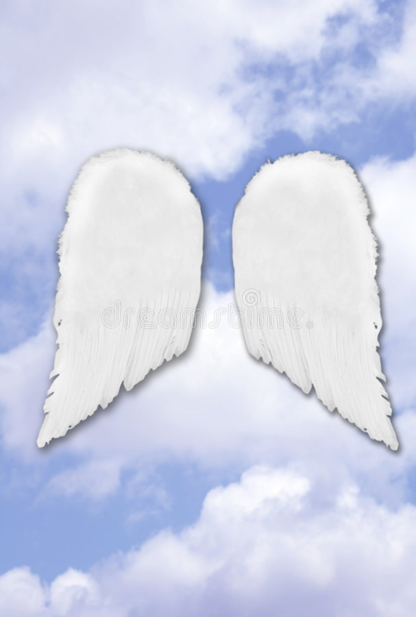 Isolated Separated Angel Wings stock images