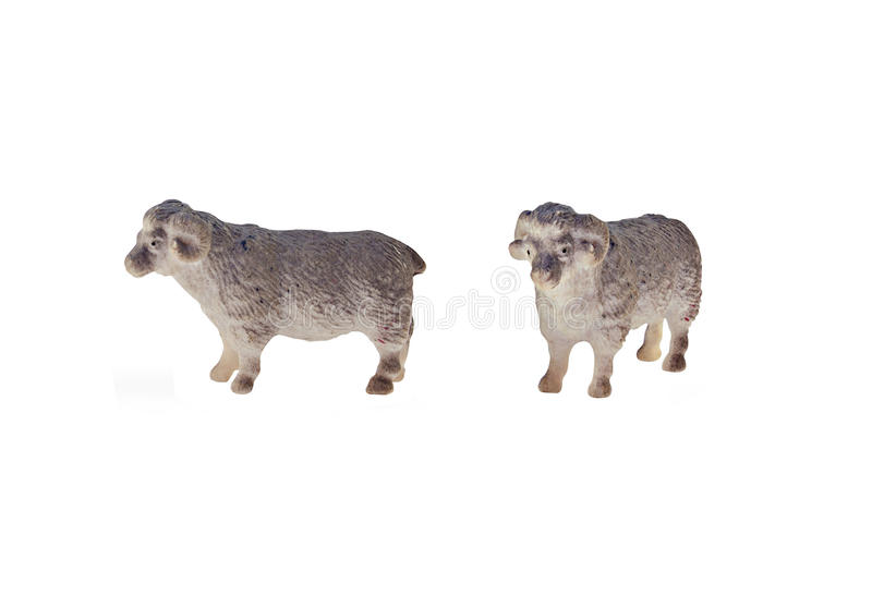 Isolated sheep toy. Isolated sheep toy side and angle view stock photos