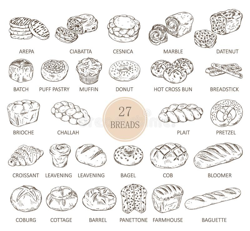 Free Isolated Sketches Of Bread Types Stock Photos - 113564393