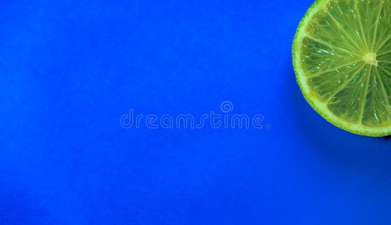 Isolated slice of lime fruit on a bright blue background. Close up view of an isolated slice of lime fruit on a bright blue background with copy space royalty free stock photography