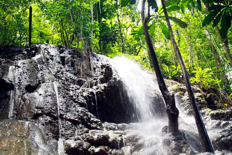 Somerset waterfalls in jungle and cave near Portland, Jamaica royalty free stock photo