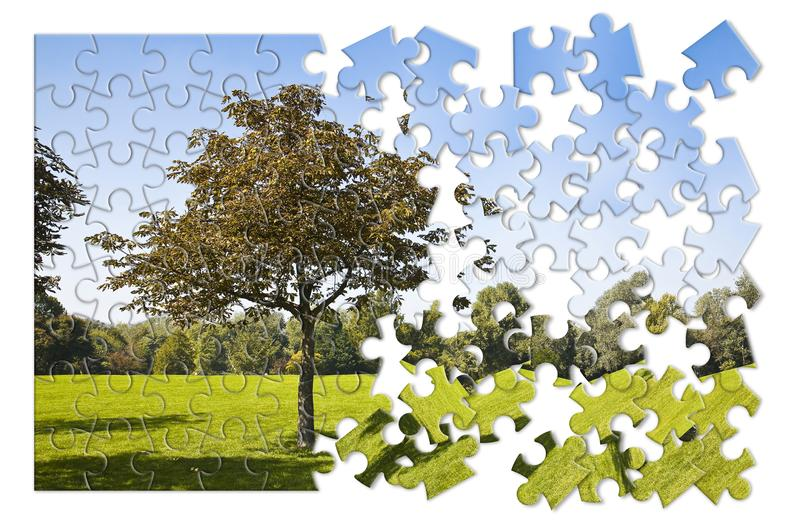Isolated tree in a green meadow - environmental conservation concept image in jigsaw puzzle shape stock image