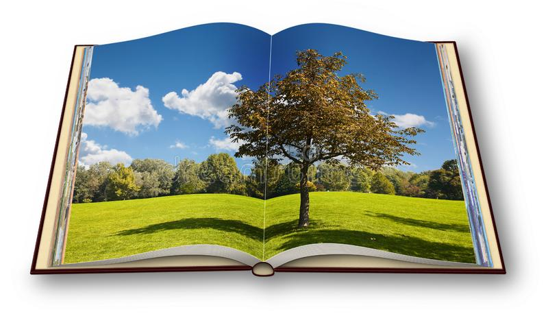 Isolated tree in a green meadow - Opened photobook on white background - I`m the copyright owner of the images used in this 3D stock images