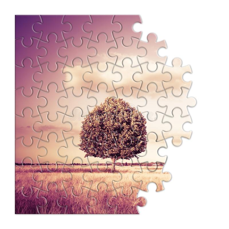 Isolated tree in a Tuscany wheatfield in shape of puzzle - Tuscany - Italy - toned image stock photos